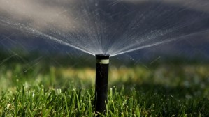 East Bay District Faces Likely Water Rationing