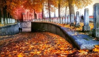 autumn-1013304_960_720