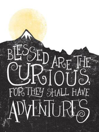 Curious Adventurers
