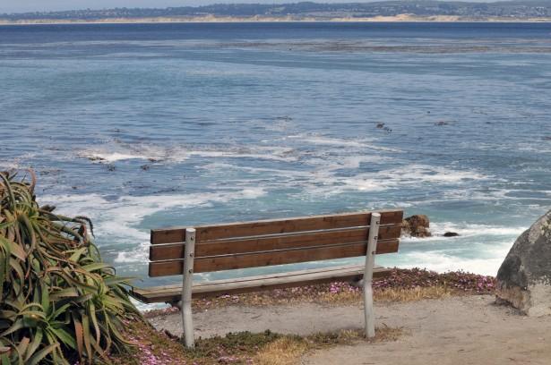 seasidebench